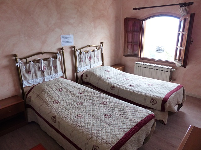 Izba s dvoma samostatnými posteľami.jpg